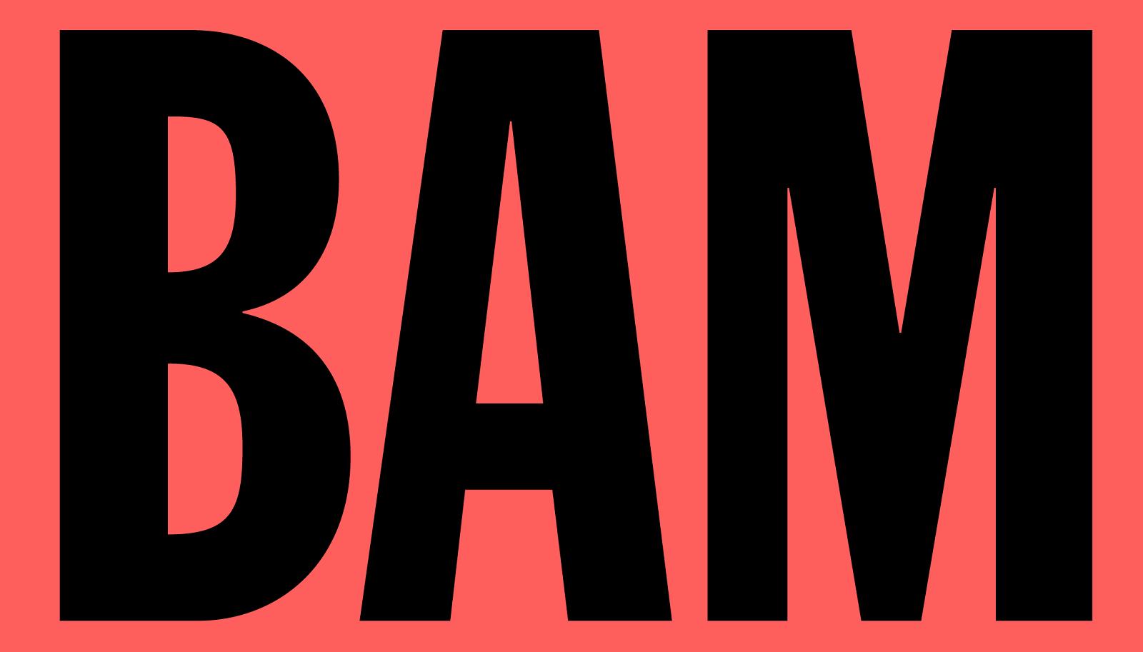 bam-web_03@2x_logo3