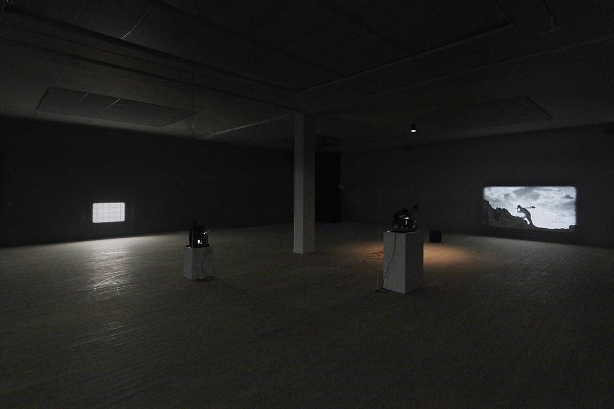 1848/1954/2060 And Other Specimens, Installation, 2013
