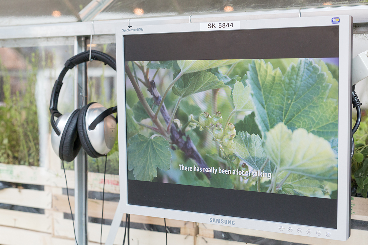 Marie Markman, Making an 'Edible Estate' garden in collaboration with a Danish family, 2015, Video installation. Photo by Thomas Lillevang. Courtesy of the artist.