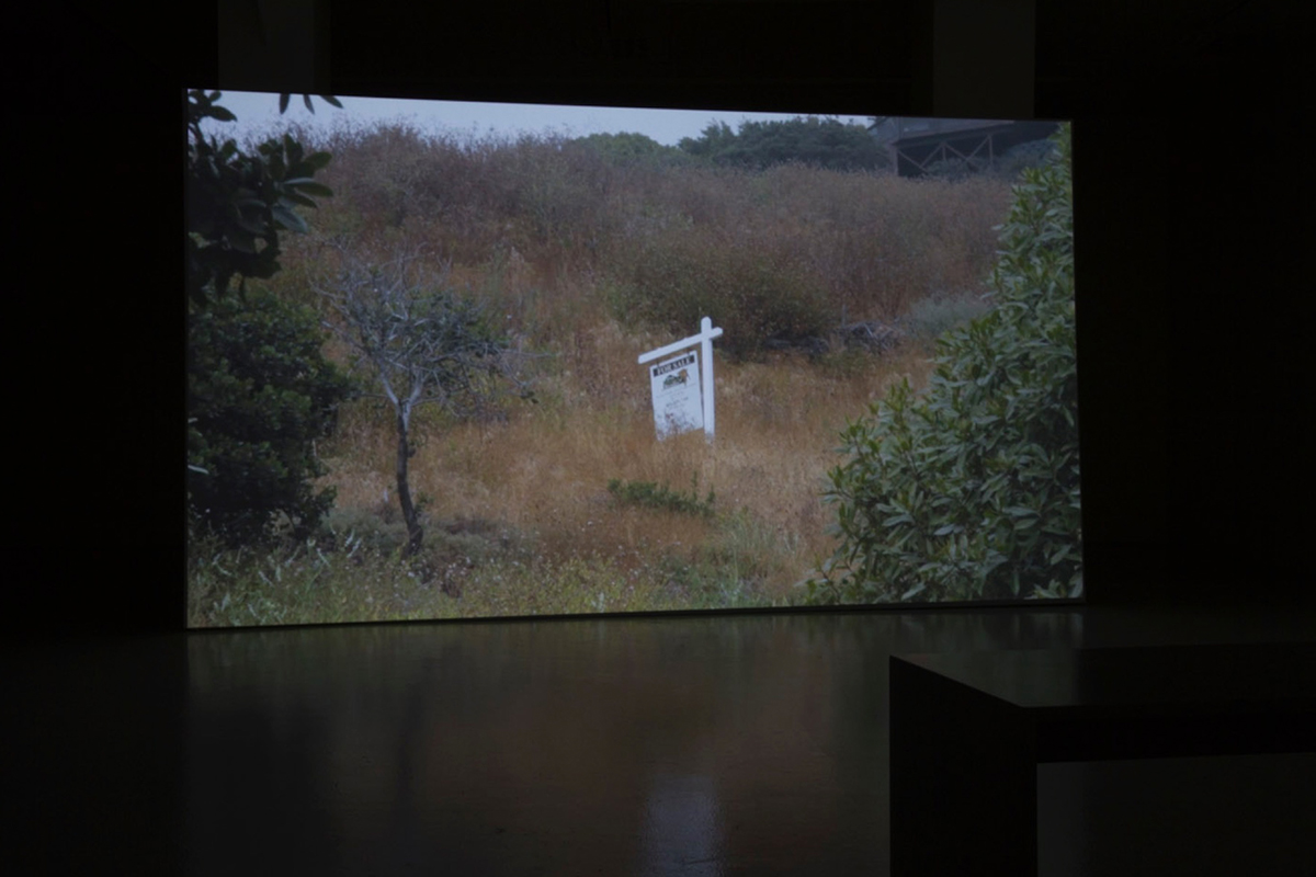 Stefan A. Pedersen, Tidelands, 2019. HD video with sound, 21 minutes. Photo by Stefan A. Pedersen. Courtesy the artist.
