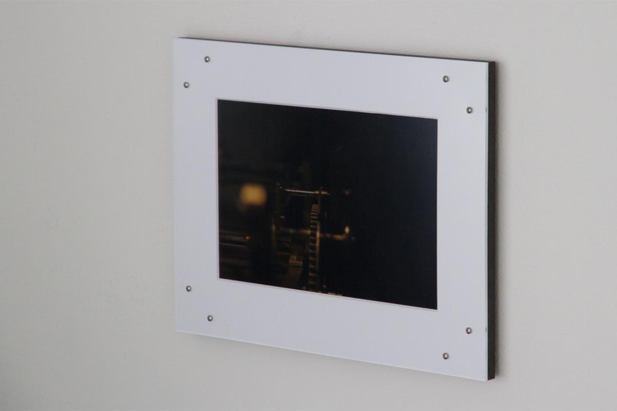 Stefan A. Pedersen, La Salle Des Espèces Menacées et Disparues, 2019. Digital C-Print. 20 x 30 cm, series of twelve. Photo by Stefan A. Pedersen. Courtesy the artist.