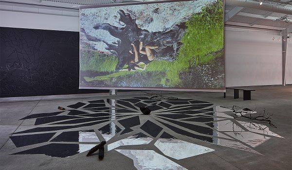 Ranu Mukherjee, Succession, 2018. Video Installation: HD Video (5 Minutes 41 Seconds), 2 Sided Projection Screen, Cut Vinyl Mirror Dance Floor, Charred Wood, And Wall Murals (latex Paint, Charcoal, And Graphite On Wall). 25 Ft X 25 Ft, 20 Ft X 12 Ft, 20 Ft X 12 Ft, 10 Ft X 12 Ft, 10 Ft X 12 Ft. Be Not Still, Living In Uncertain Times, Di Rosa Center For Contemporary Art, Sonoma, California. Photo By Johnna Arnold. Courtesy Of The Artist And Gallery Wendi Norris.