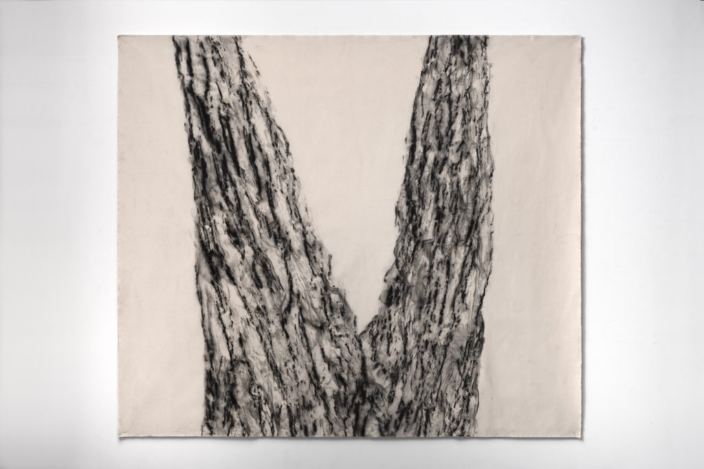 Joan Wulf, Echoes (California Redwood), 2020. Handmade charcoal on canvas. Photo by Gene Ogami. Courtesy of the artist.