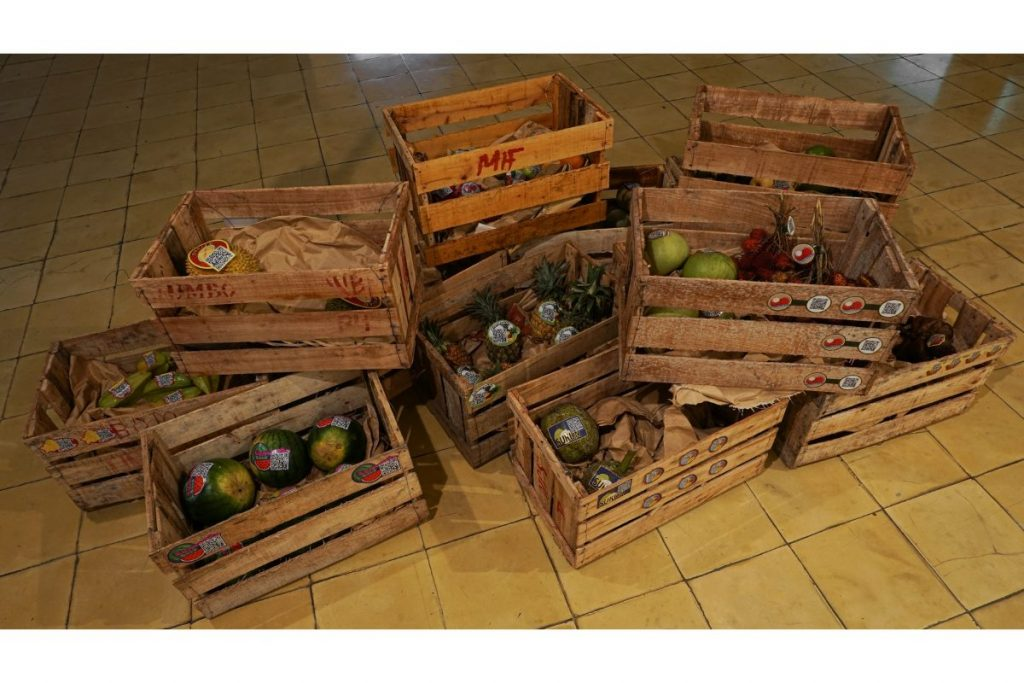 Elia Nurvista, Tropical Repertoire, 2021. Fruits And Carton Wood Boxes With Barcode (digital Print On Paper).